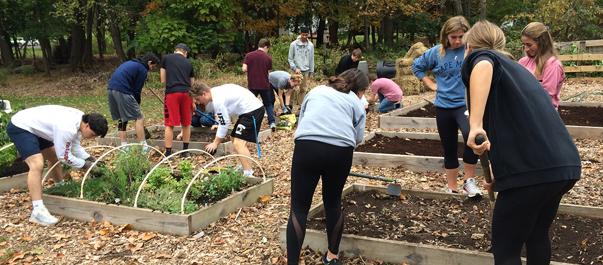 Students working on a community garden, dumping soil.